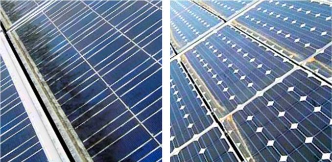 """Radically new solar plant designs (#4): X in East-West, """"The"""